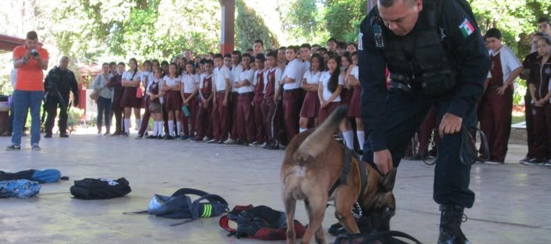 Dan demostración de de perros policías en la Eti 33