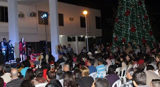 Se enciende el árbol de Navidad de Salvador Alvarado