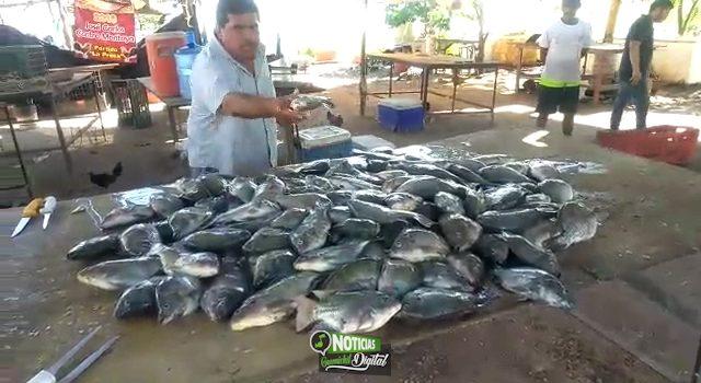 "SIN TILAPIAS PESCADORES POR DESFOGUES DE LA PRESA ""BUELNA"""