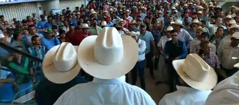 PRODUCTORES SINALOENSES PROTESTARAN EN LAS CALLES DE LA CIUDAD DE MÉXICO