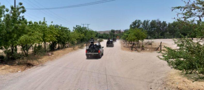 Con sobrevuelos, PEP localiza plantío de marihuana en Culiacán