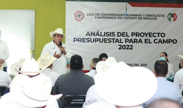 Propondrá la CNC Sinaloa que se retome el ingreso de garantía para el maíz en Sinaloa.