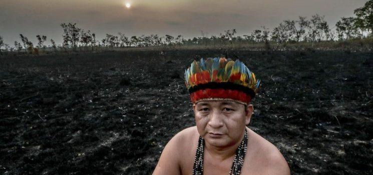 La Amazonía podría ser una sabana en 50 años, según estudio