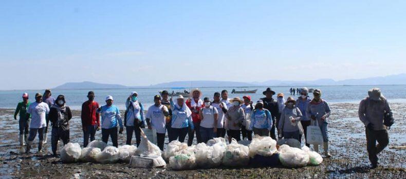 *SEDESU y voluntarios recogen 400 kilos de plástico de la isla Tachichilte en la Bahía Santa María*